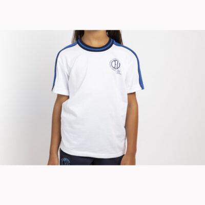 4018-camiseta-mc-0106