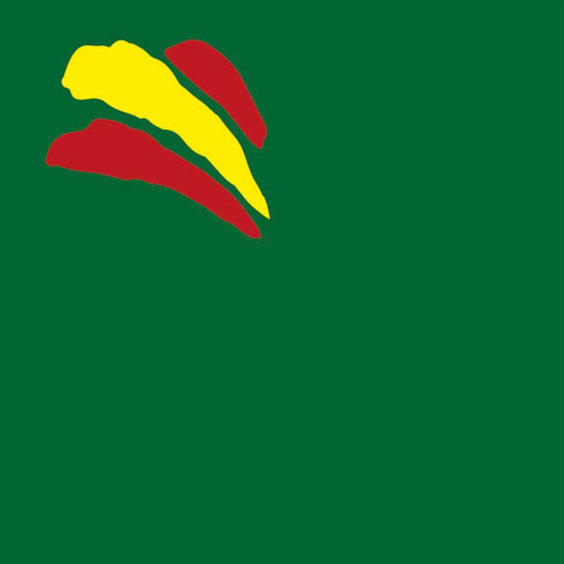 Mascarilla reutilizable con diseño bandera de España fondo verde. Fabricada en España.